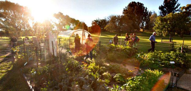 Riverside Albert Community Garden is almost ready!